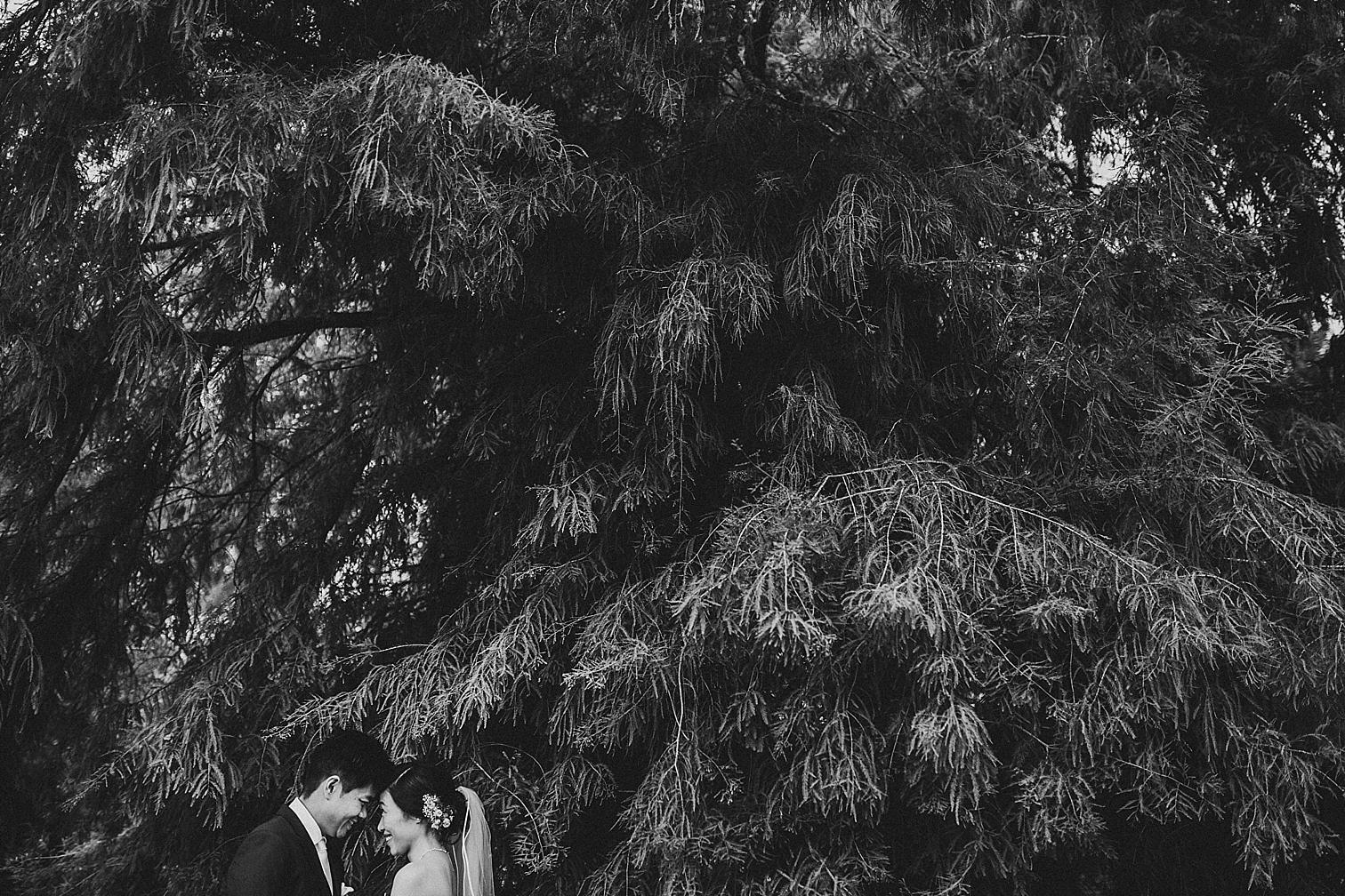 Wedding Photographer Alice Mahran photography_0564