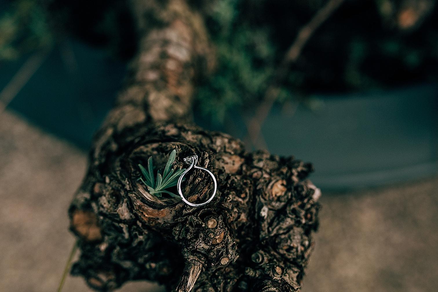 Wedding Photographer Alice Mahran photography_0615